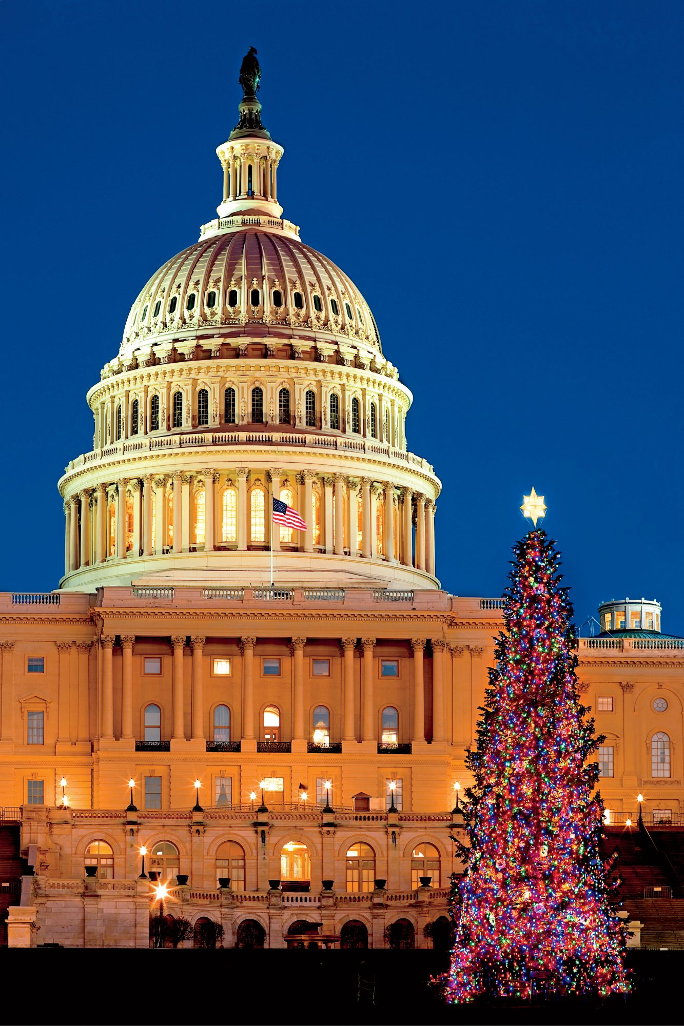 Christmas In Dc.Why You Should Celebrate The Holidays In Washington Dc