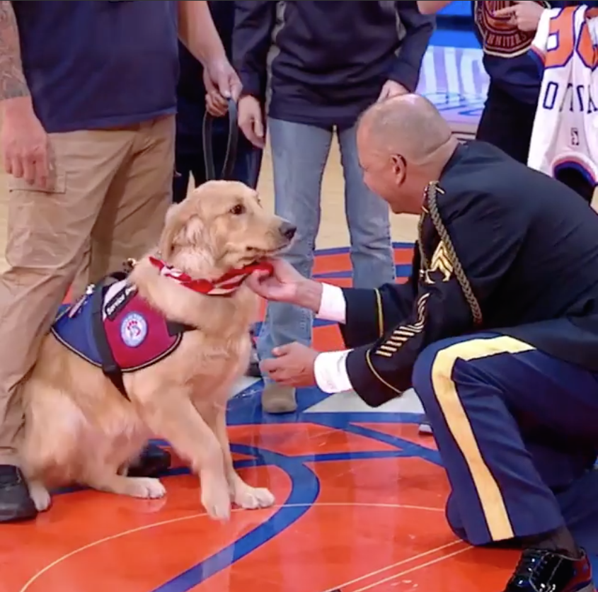 When a military hero was honored with a surprise service dog