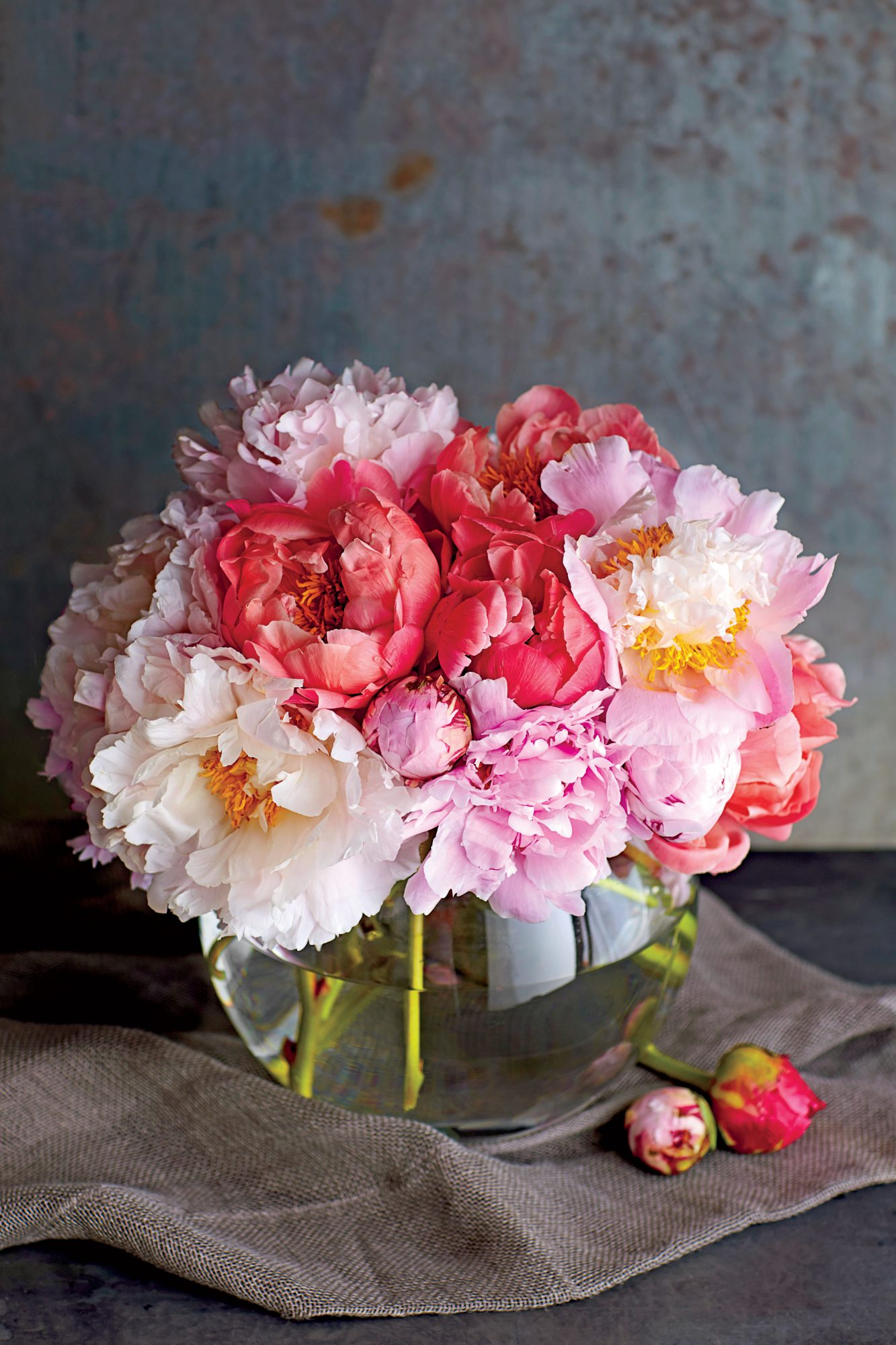 How to dry a peony southern living how to dry a peony and keep it forever izmirmasajfo