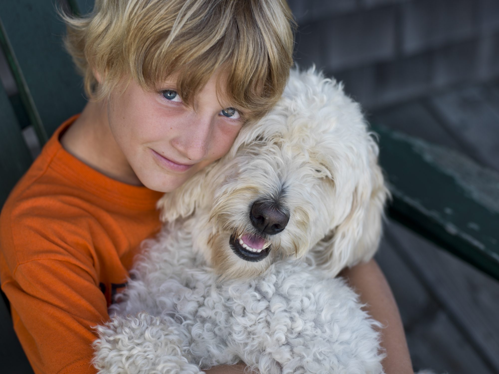 Boy with White Fluffy Dog