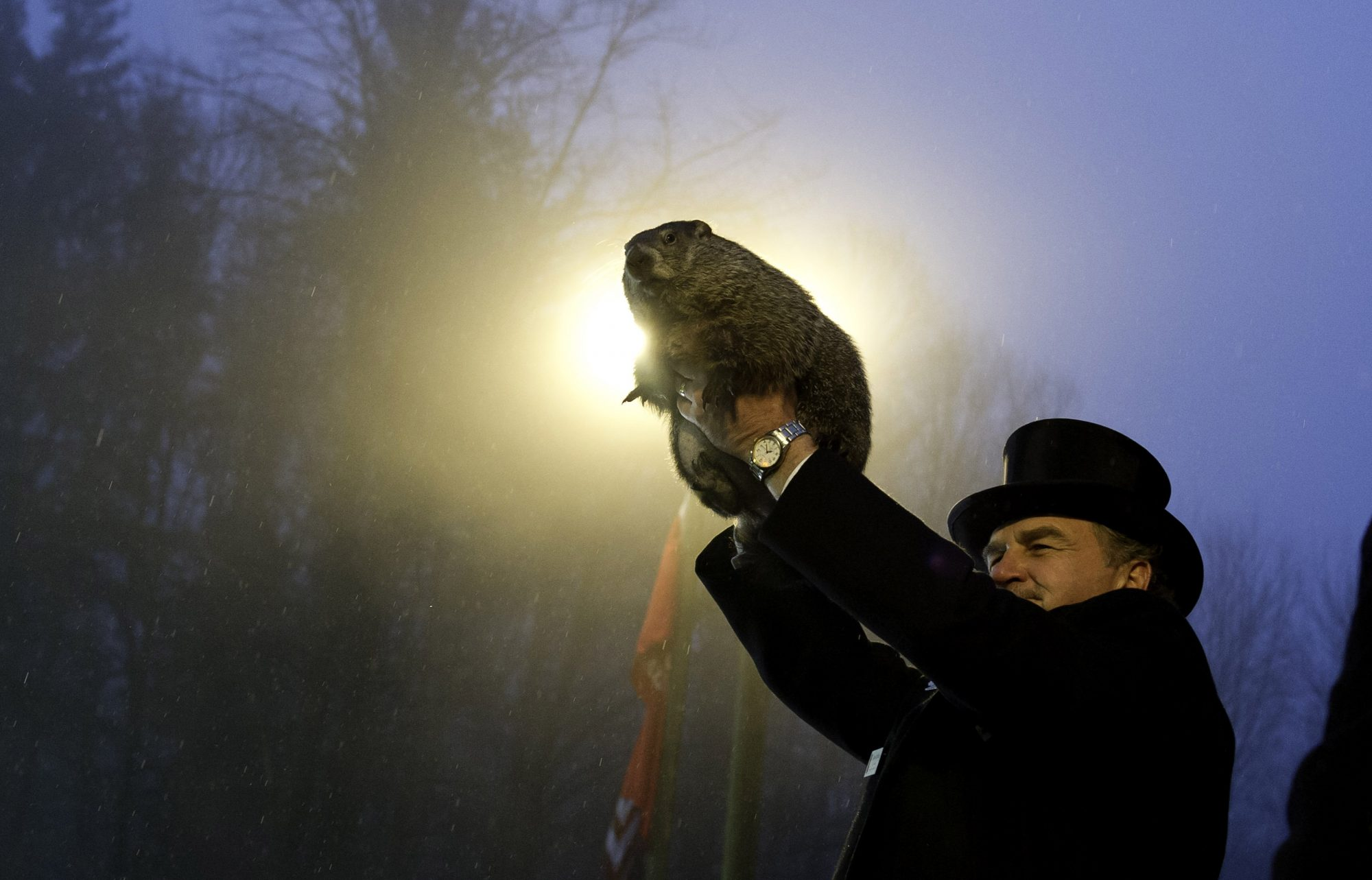 Here's How Groundhog Day Got Started