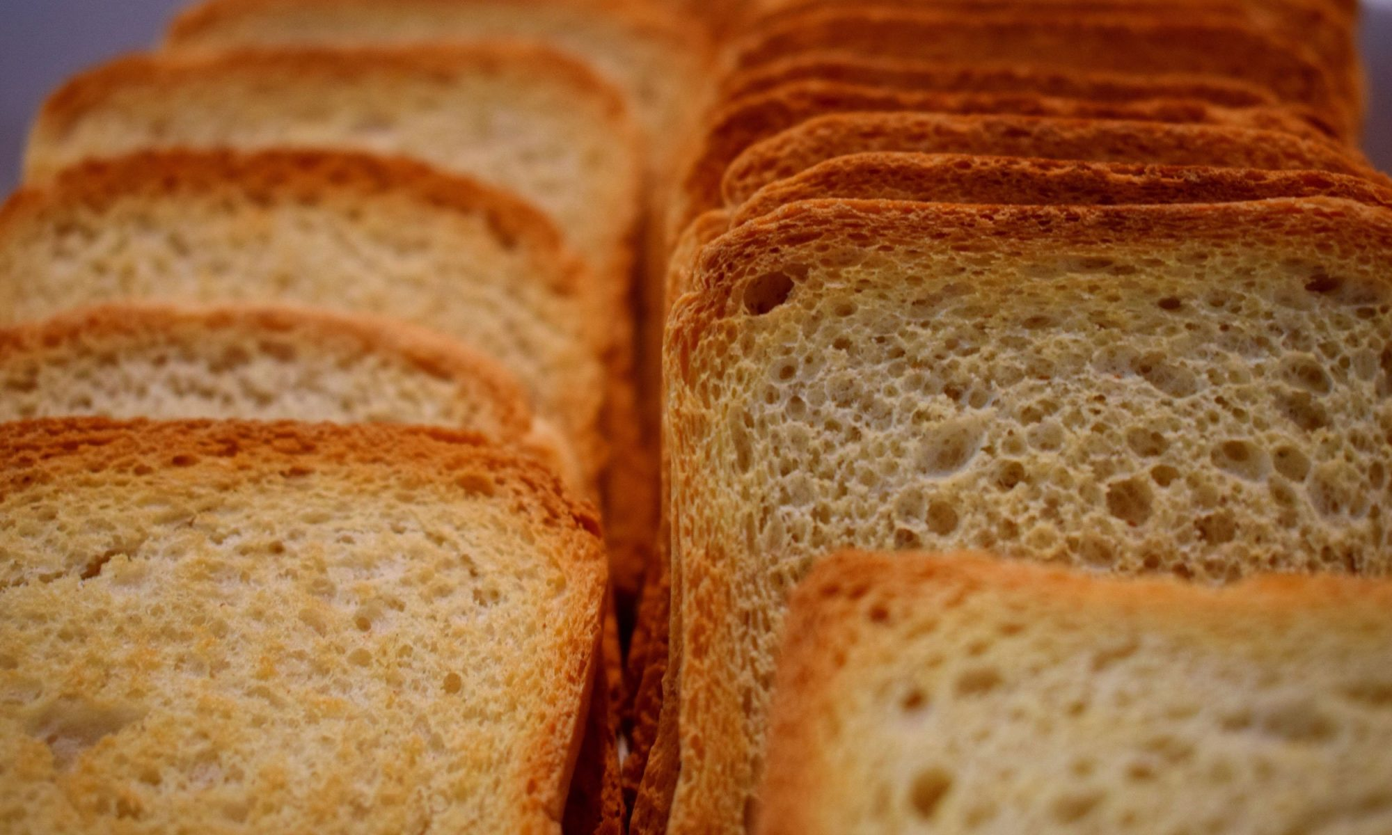 Eat More Toast, Live More Days