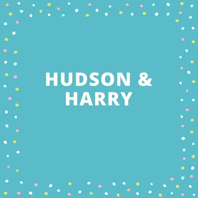 Twin Names: Hudson and Harry