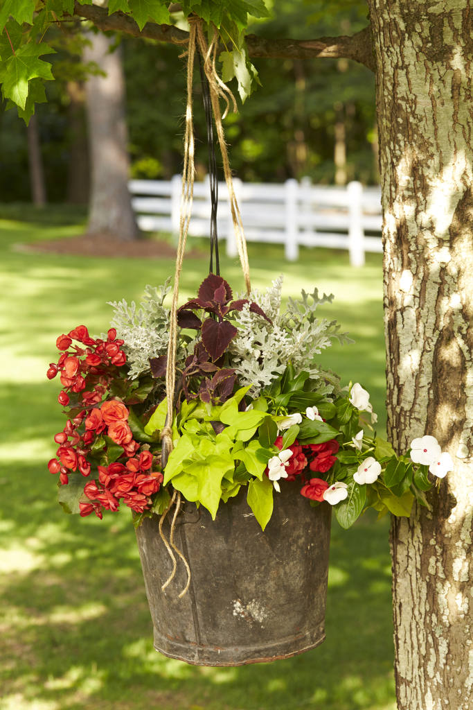 Rustic Hanging Container