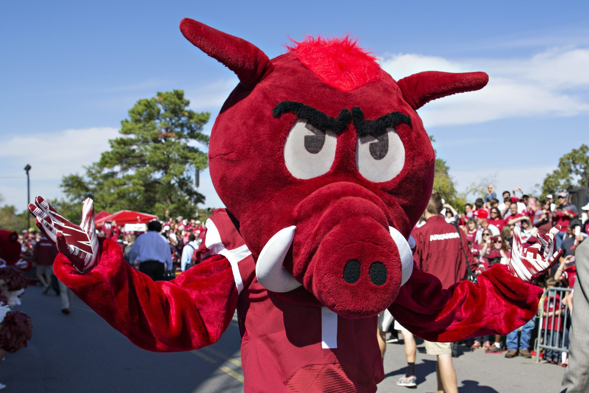 12. University of Arkansas