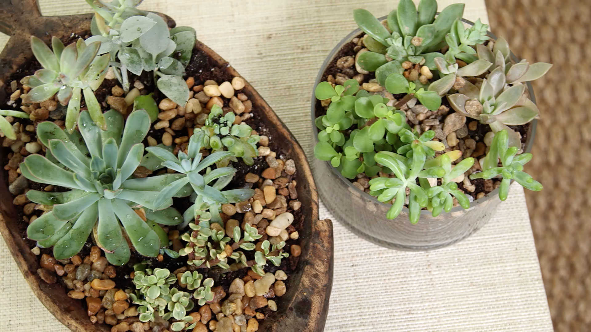 RX_1703_Porch Floral DIY Ideas_Porch Succulents