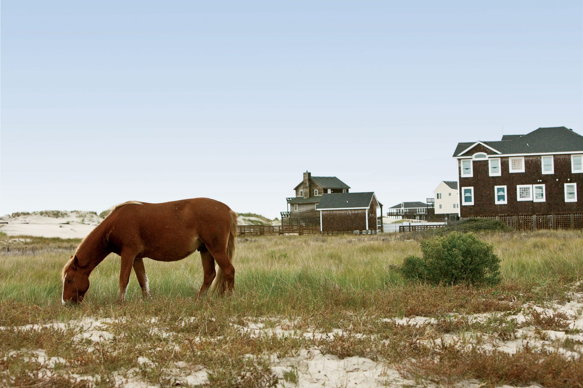 The Best Of Nags Head Nc Outer Banks Vacation Guide Southern Living