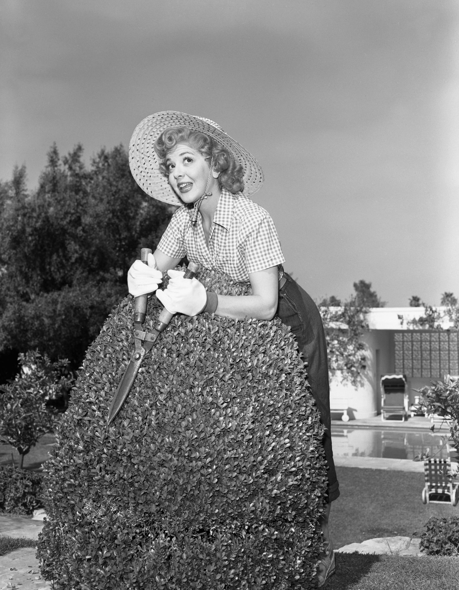 woman trimming boxwoods
