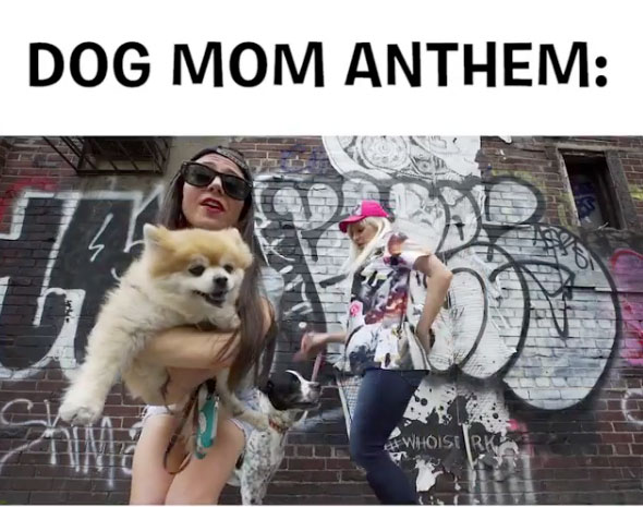 Dog Mom Anthem
