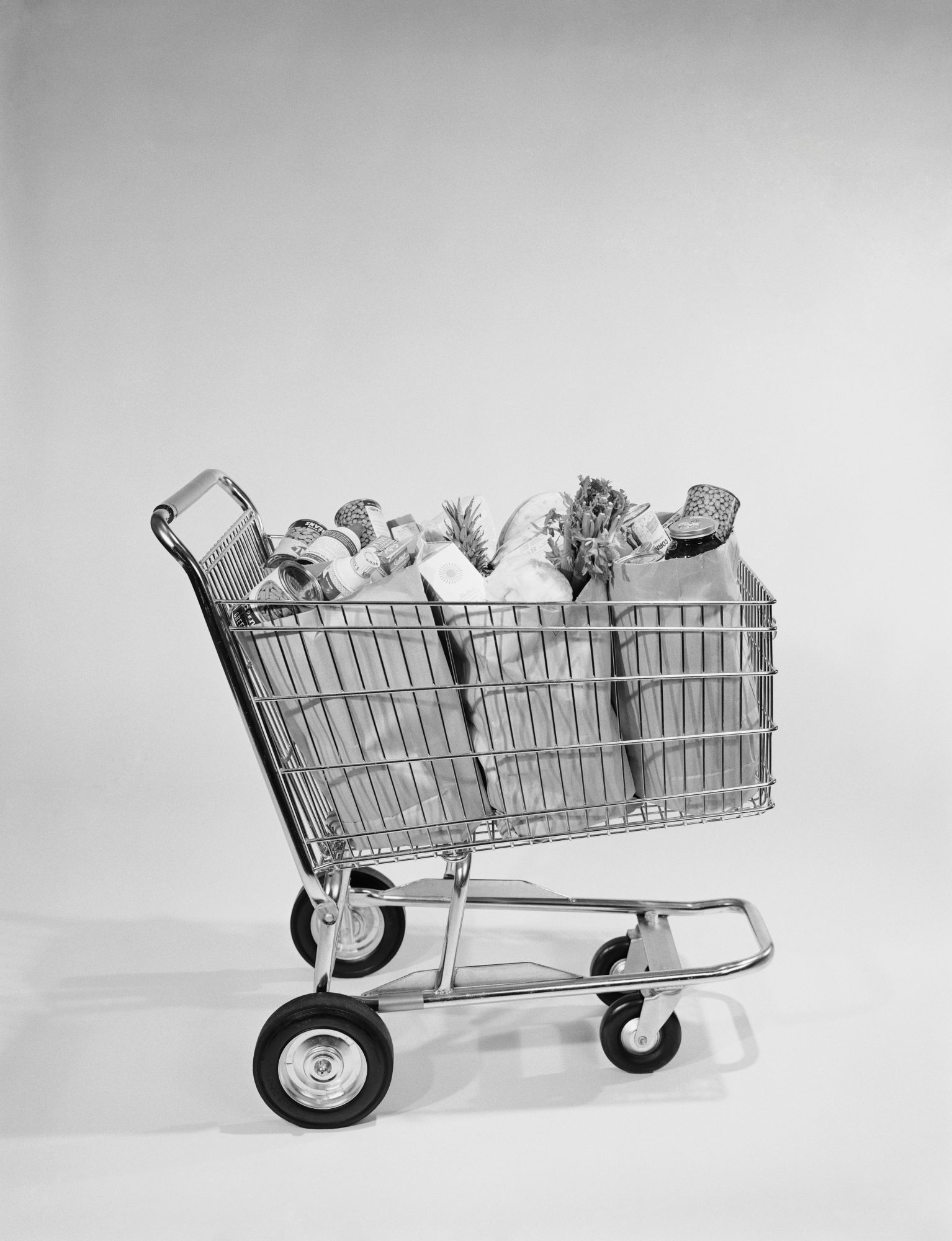 Shopping Cart with Groceries