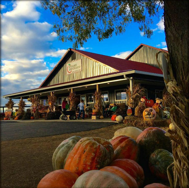 Best Pumpkin Patches in Every Southern State Kentucky