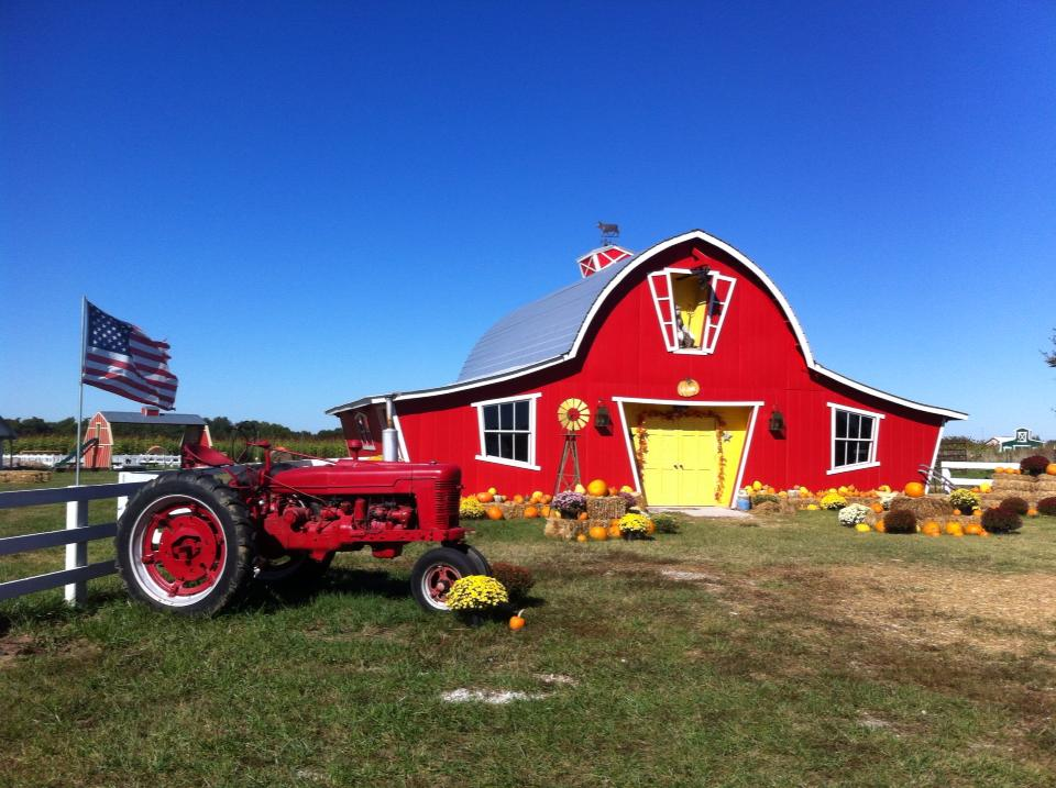 Best Pumpkin Patches in Every Southern State Oklahoma