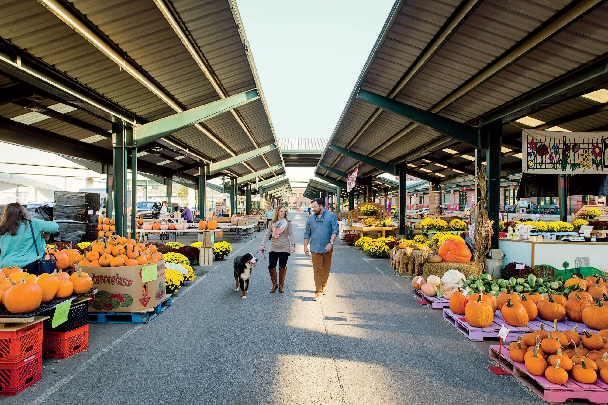 Capitol Market in Charleston WV with pumpkins and flowers