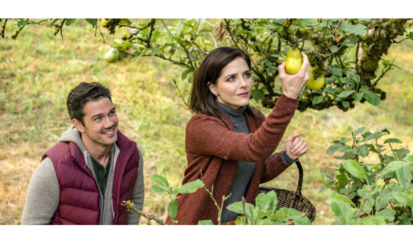 Harvest Love Hallmark Channel Movie Lineup