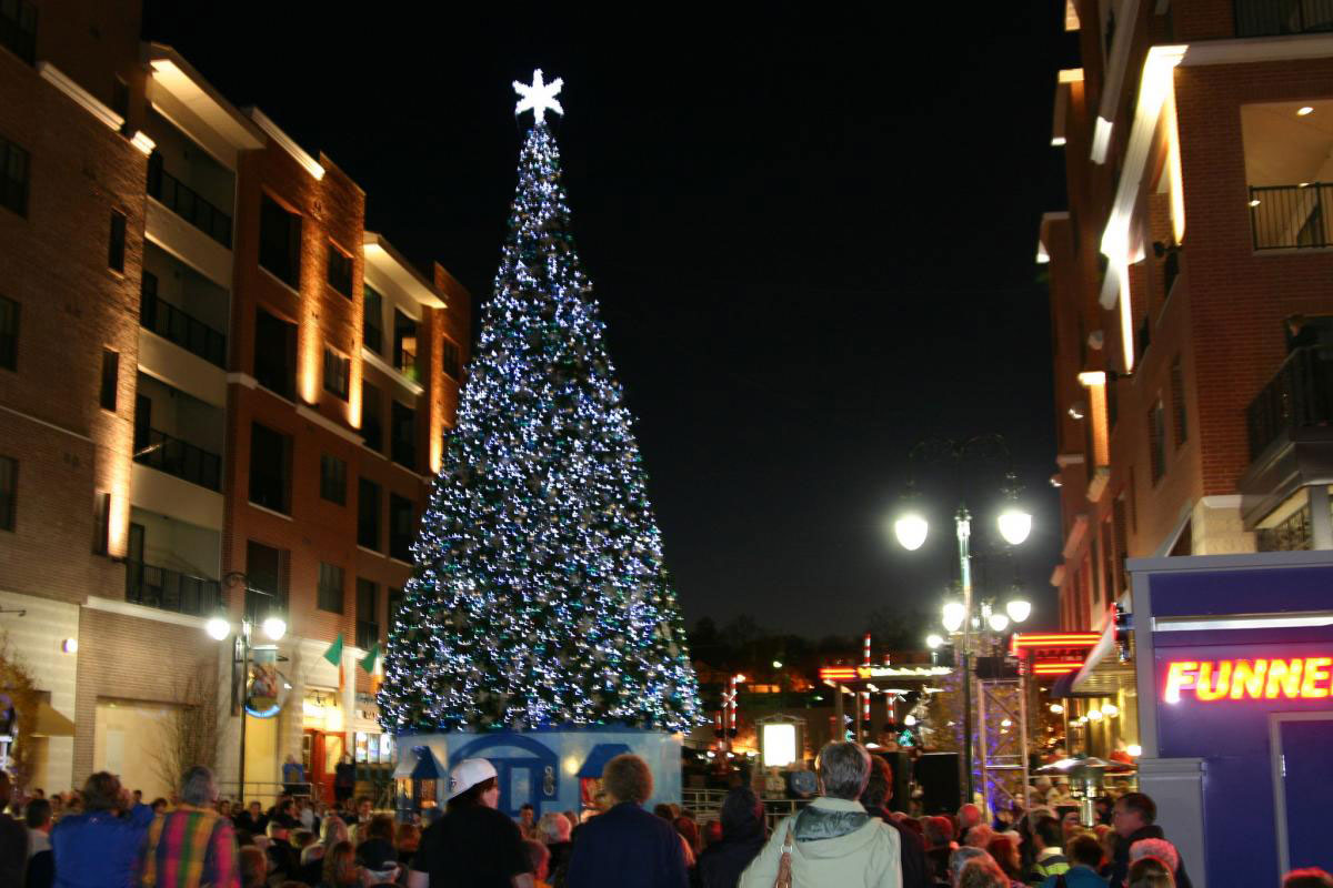 See over 1,000 gussied-up Christmas trees around the town.