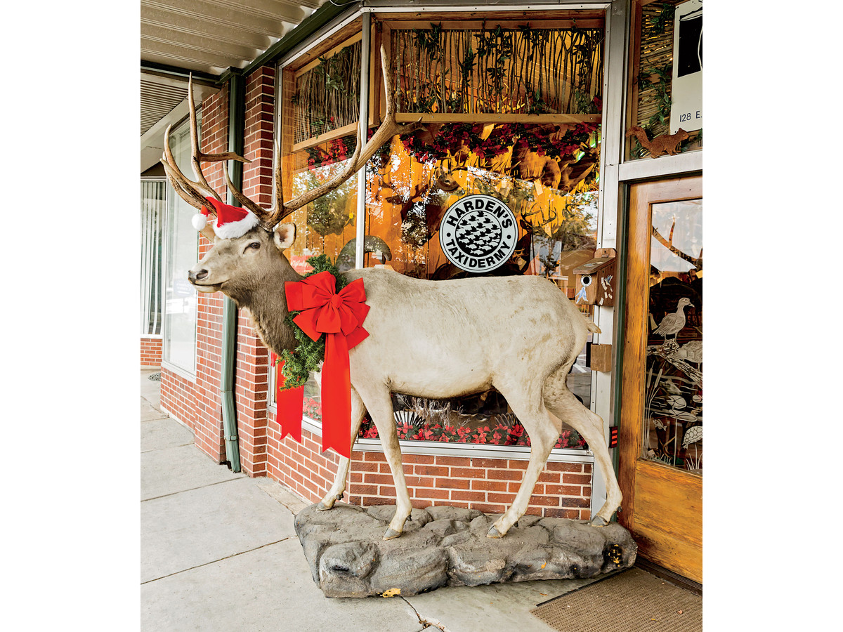 Harden's Taxidermy in Thomasville, GA