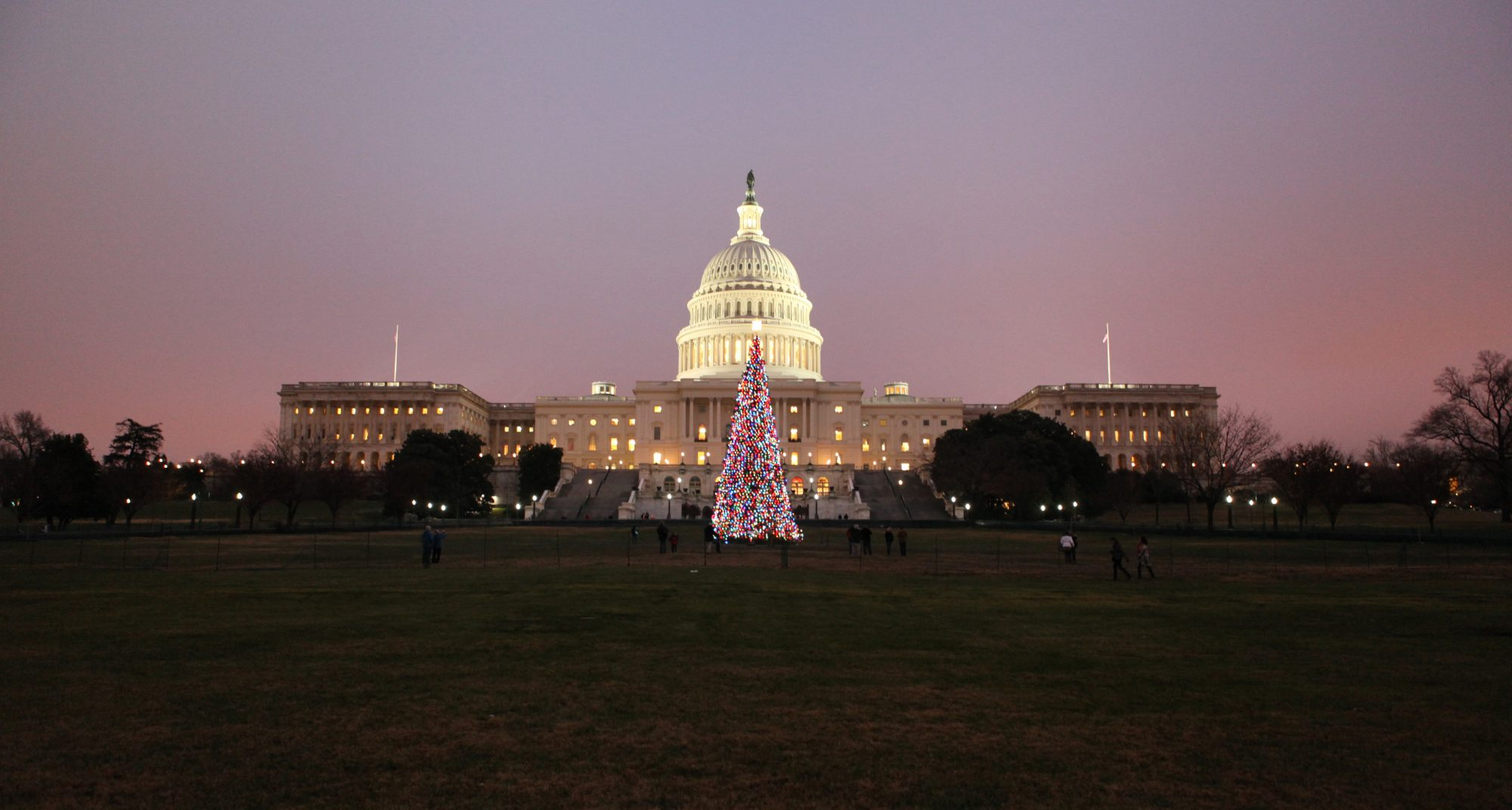 Capitol Christmas Tree.Watch The U S Capitol Christmas Tree Arrive At Its New Home