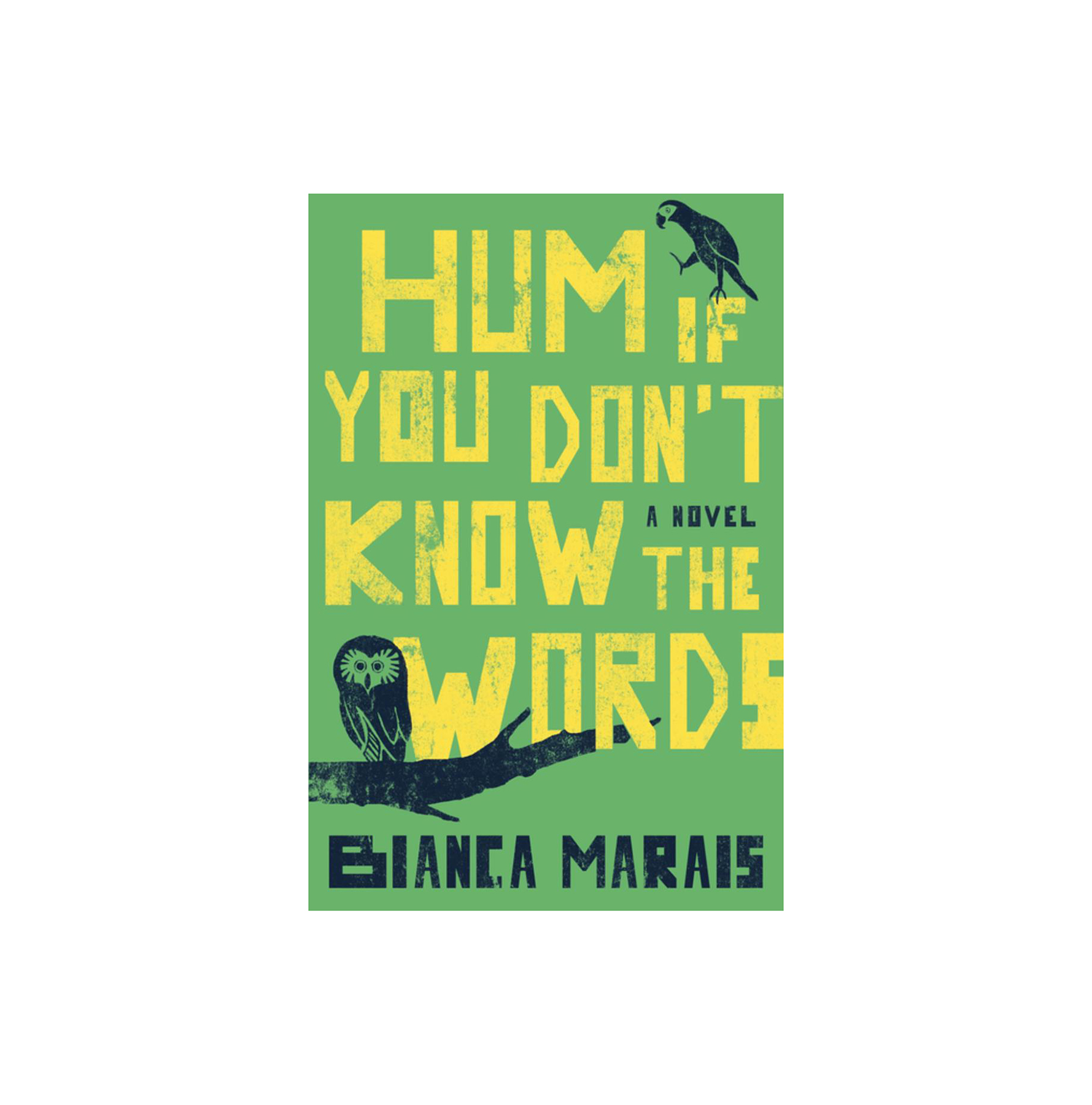 Hum If You Don't Know The Words, by Bianca Marais