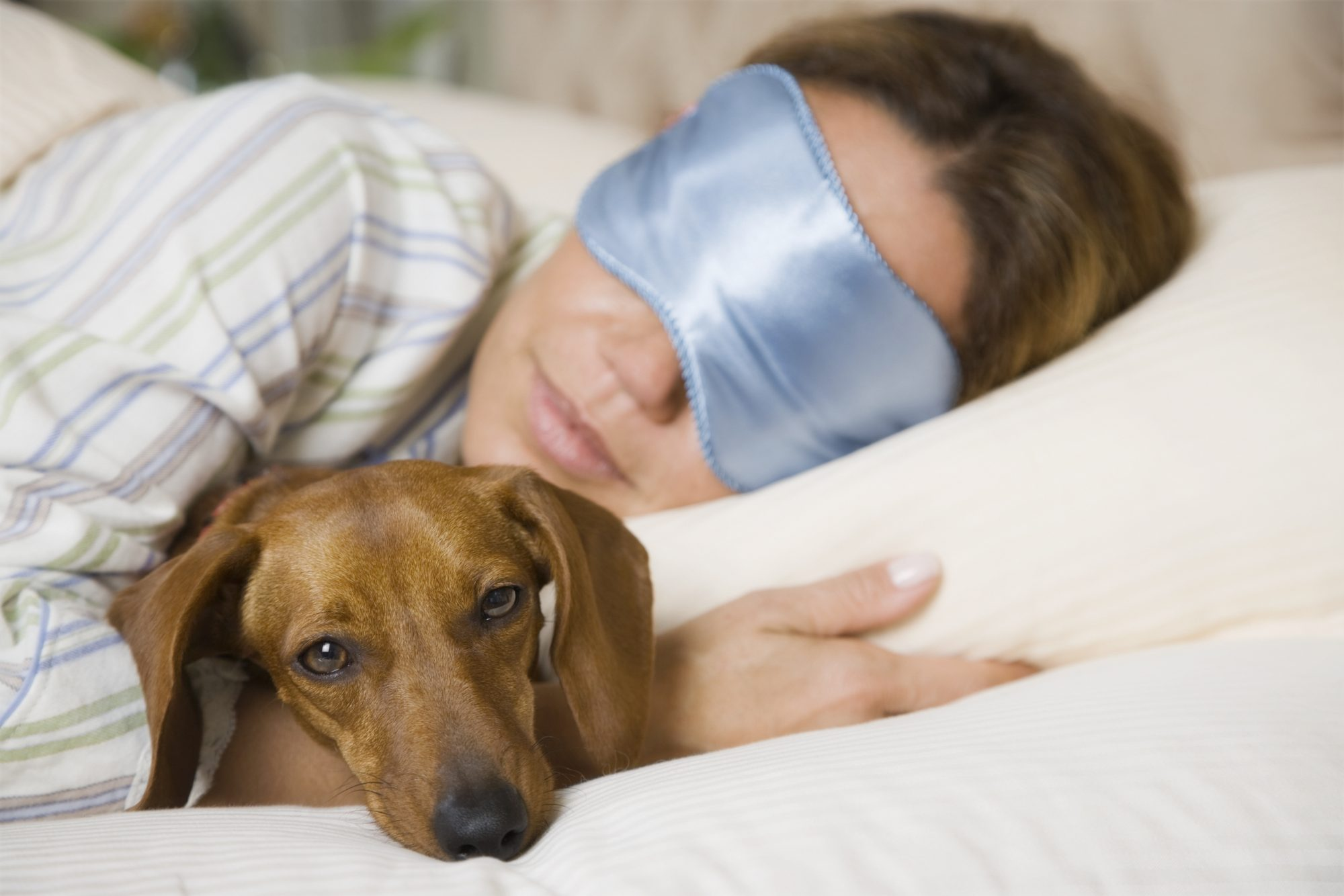 Woman in Blue Mask Sleeping with Dog