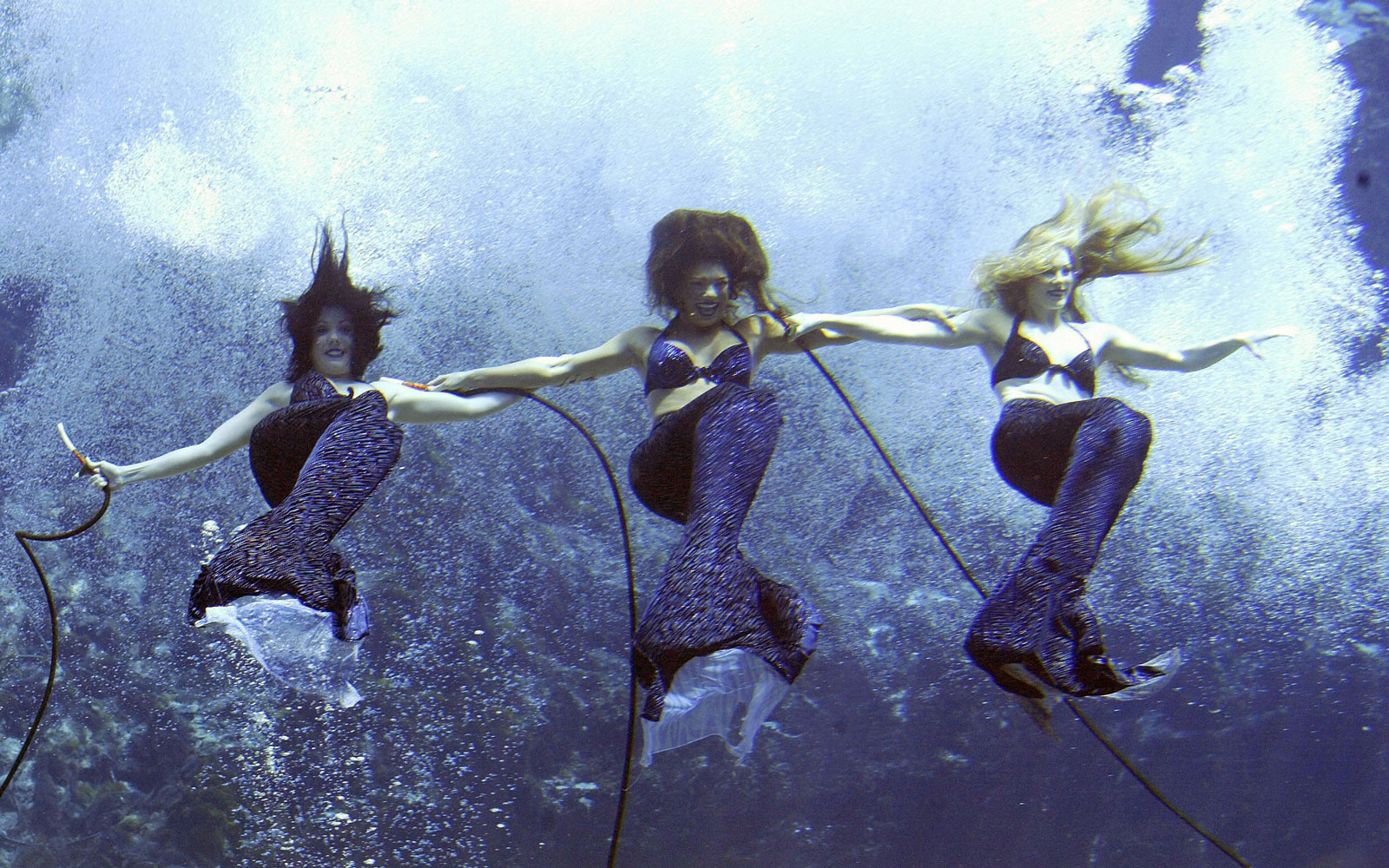 weeki watchee mermaids