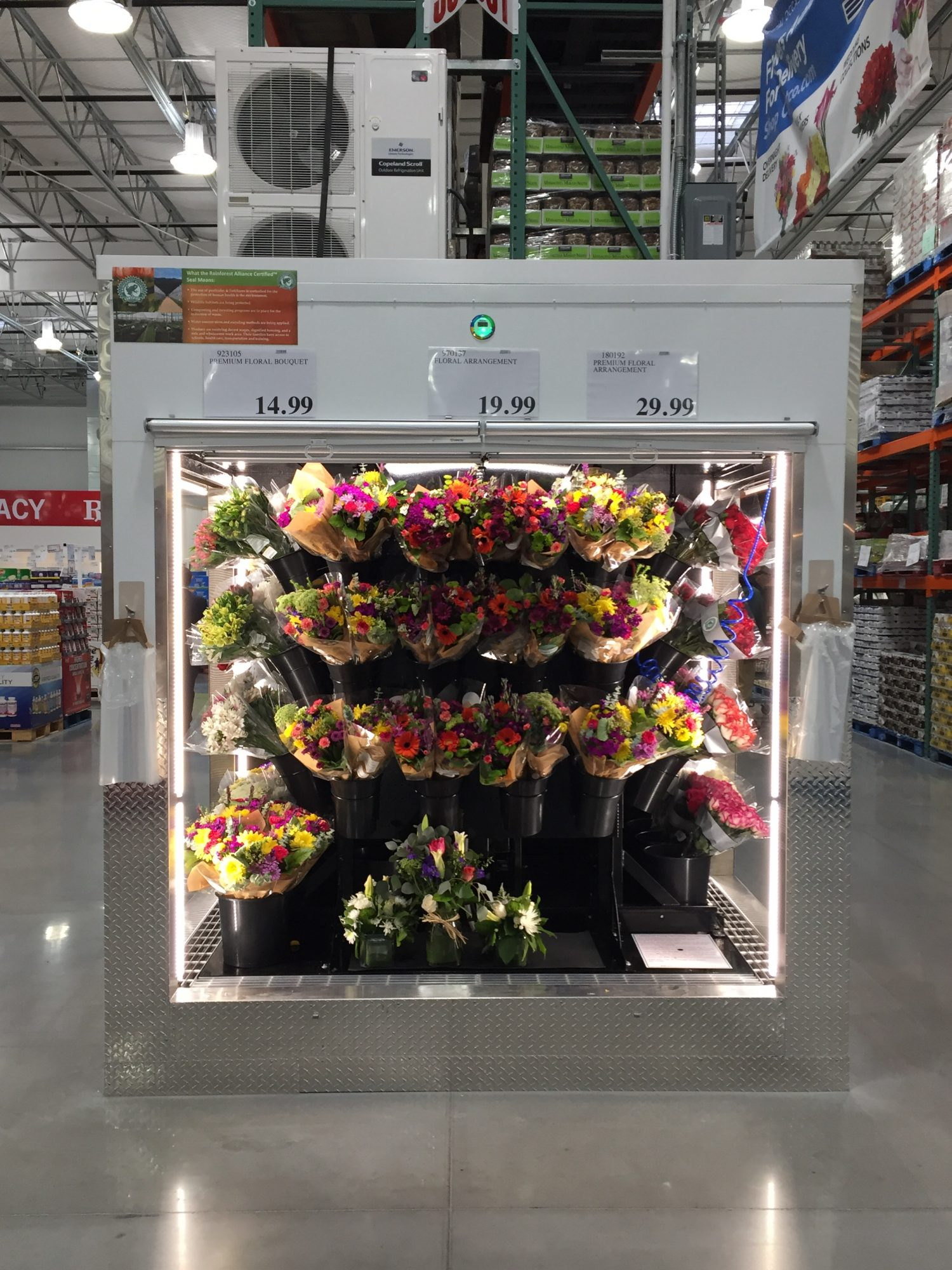 Costco Assorted Flowers