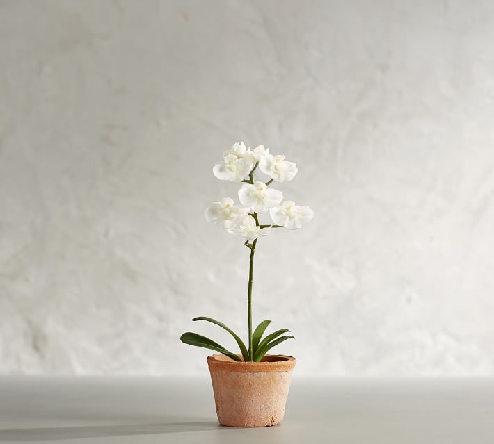 For Housewarmings: Mini Faux Potted Orchid