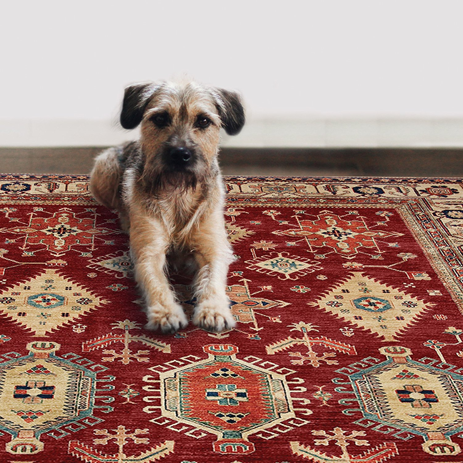 Ruggable Rug with Dog