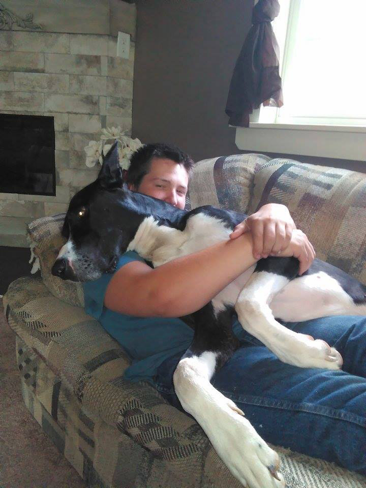 Great Dane Alerts and Saves Family From Giant Fire Minutes Before House Goes Up in Flames great-dane-3