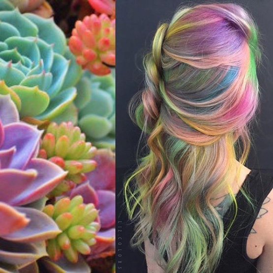 Bright and Colorful
