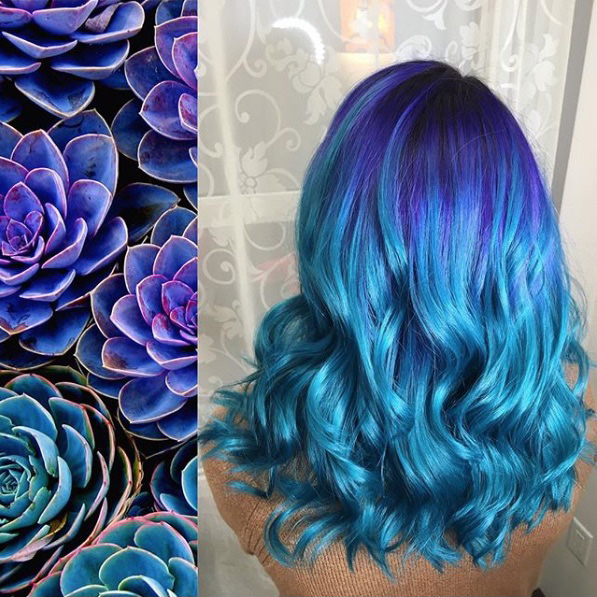 Vibrant Blues and Purples