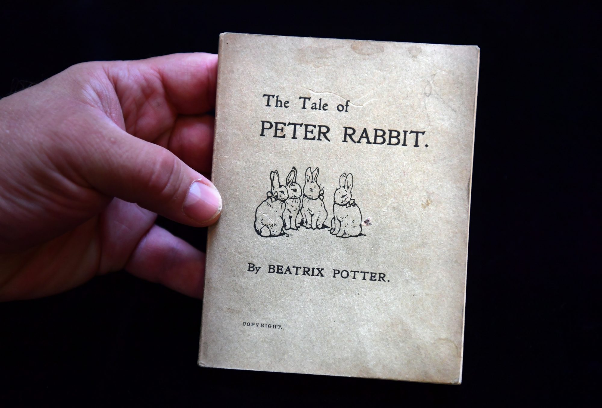 Southern Living The Tale of Peter Rabbit Book