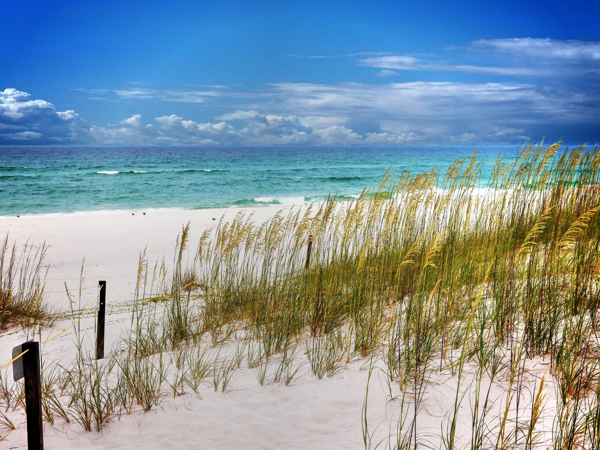 the south s best beaches 2018 southern living