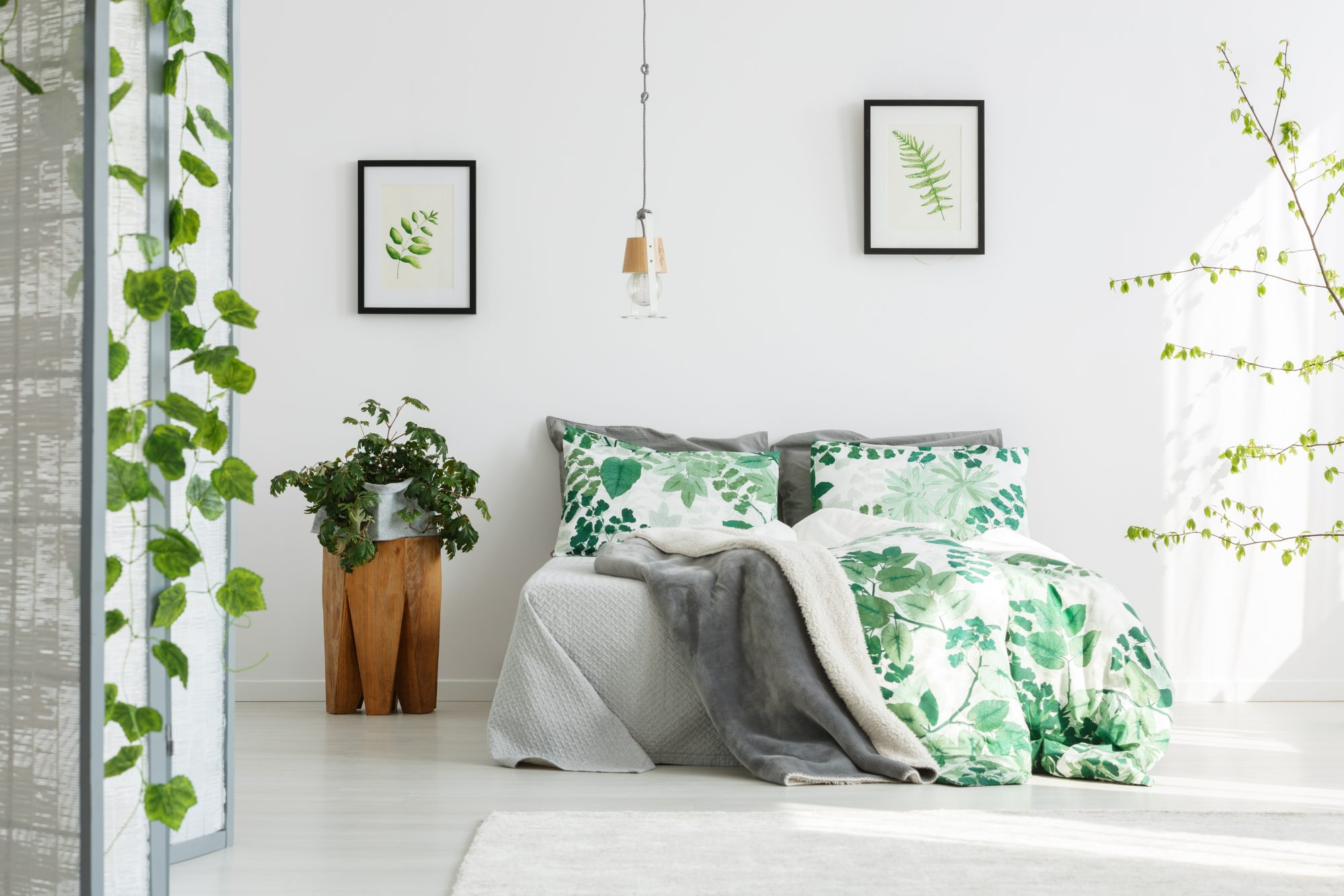 These Are The Best Plants For Bedrooms