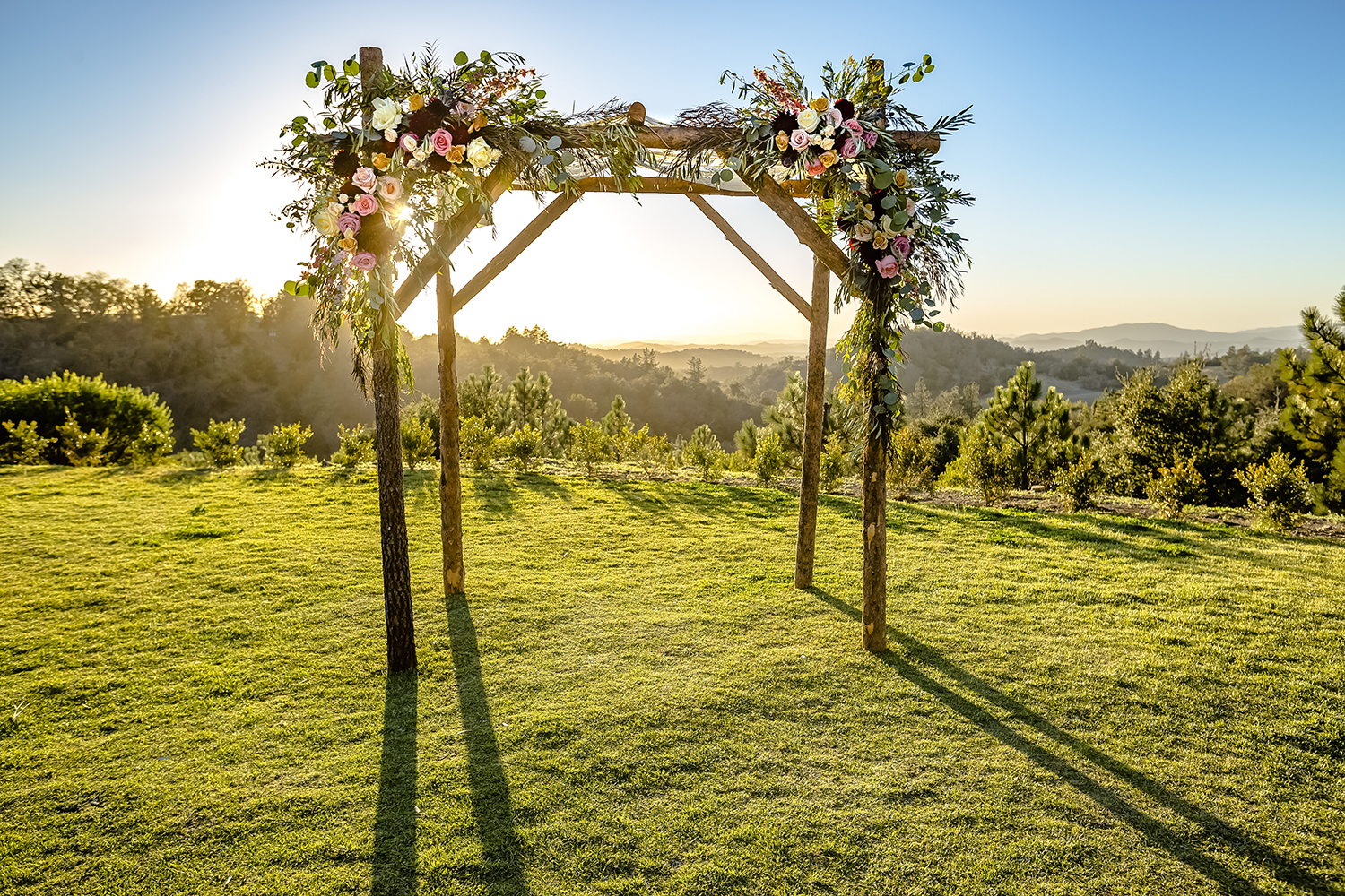 Arch for Wedding in the Sun