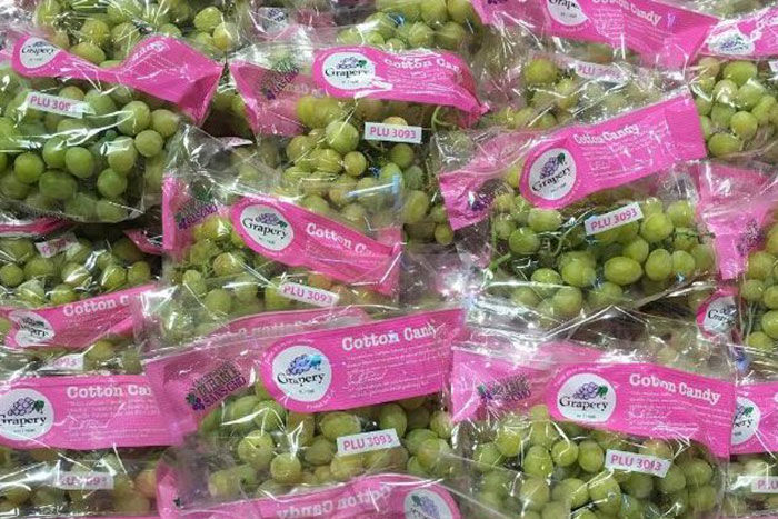 Grapery's Cotton Candy Grapes