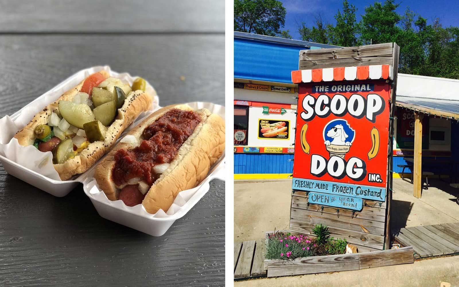 The Original ScoopDog, Arkansas