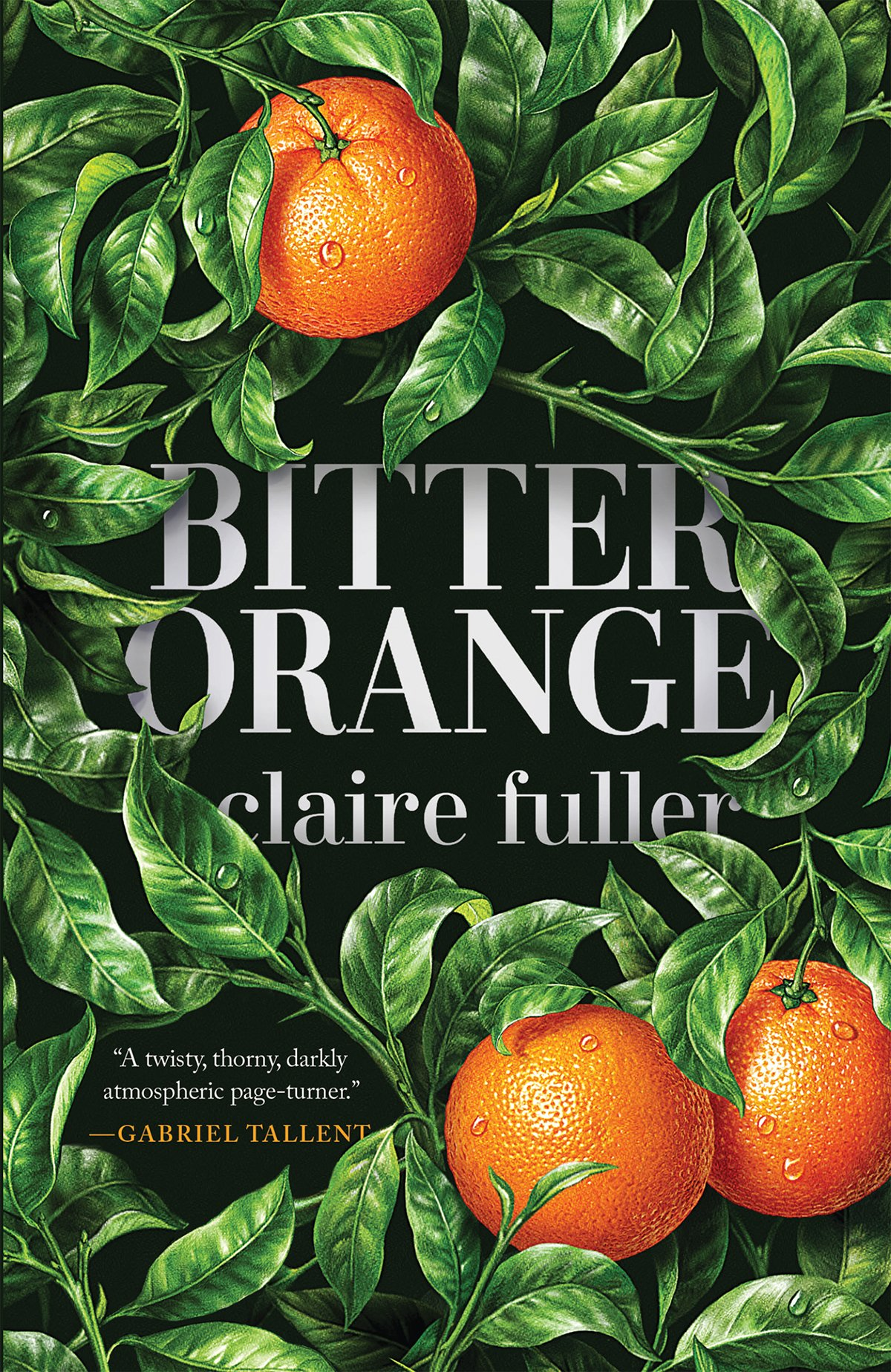 Bitter Orange by Claire Fuller