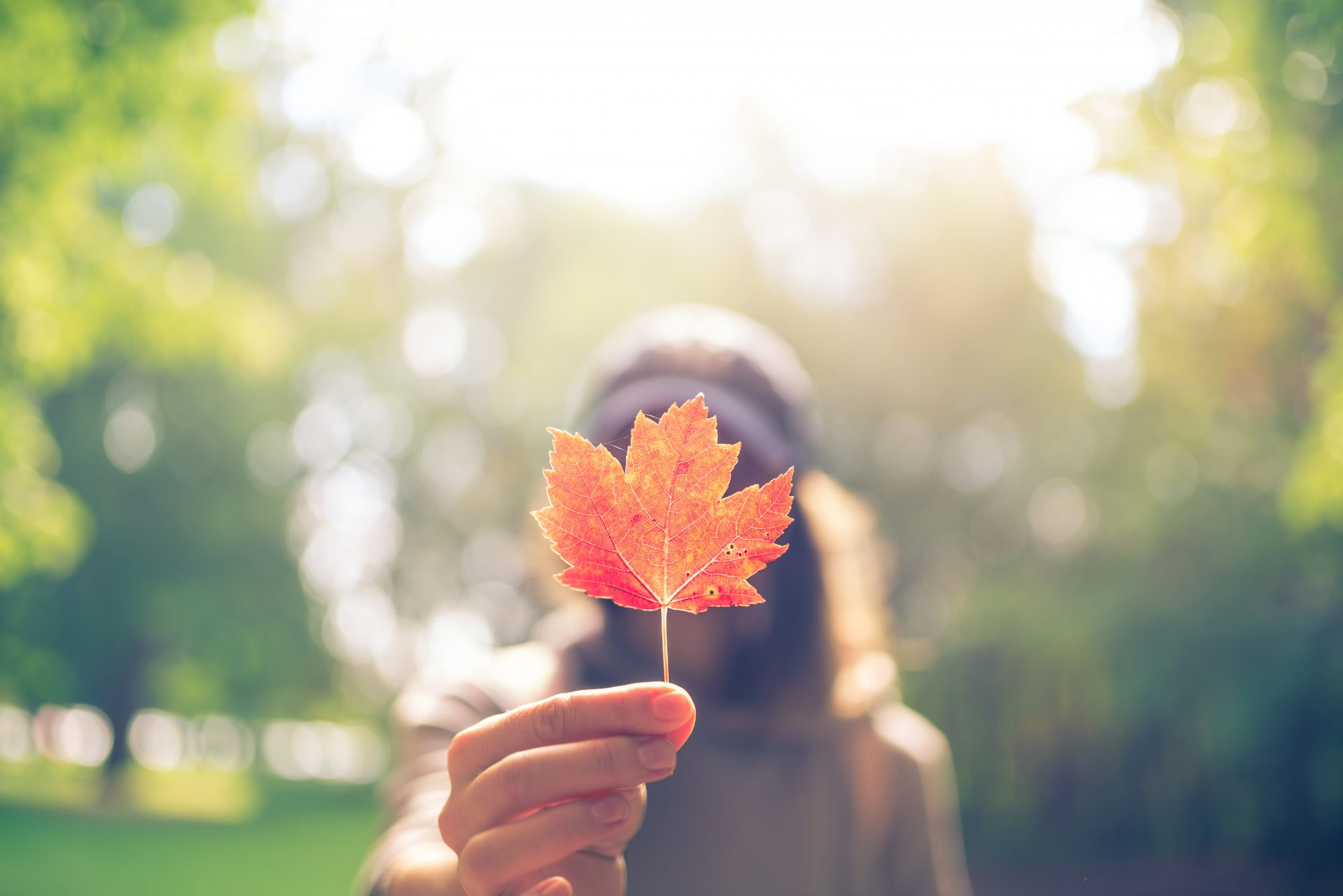 Woman Holding Maple Leaf