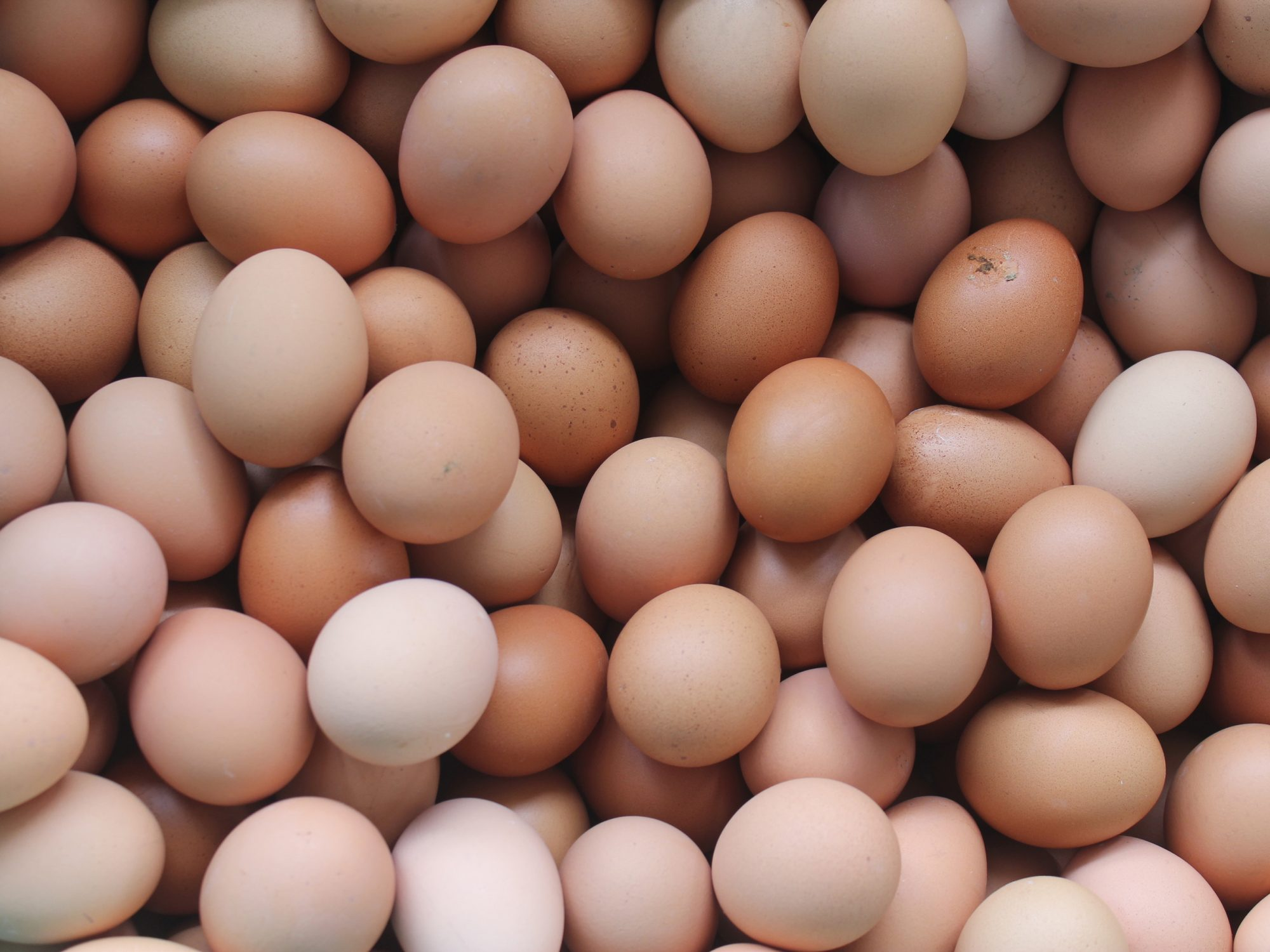 FDA Announces Another Salmonella Outbreak Linked to Eggs