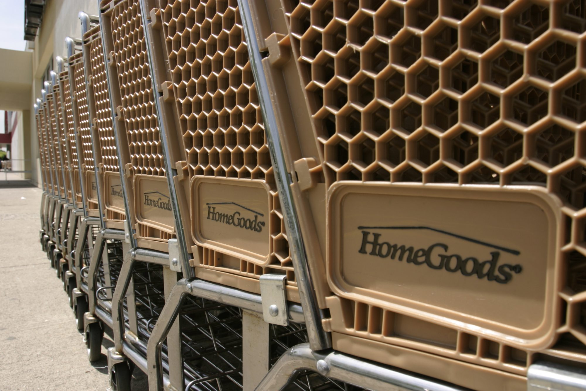 HomeGoods Shopping Carts