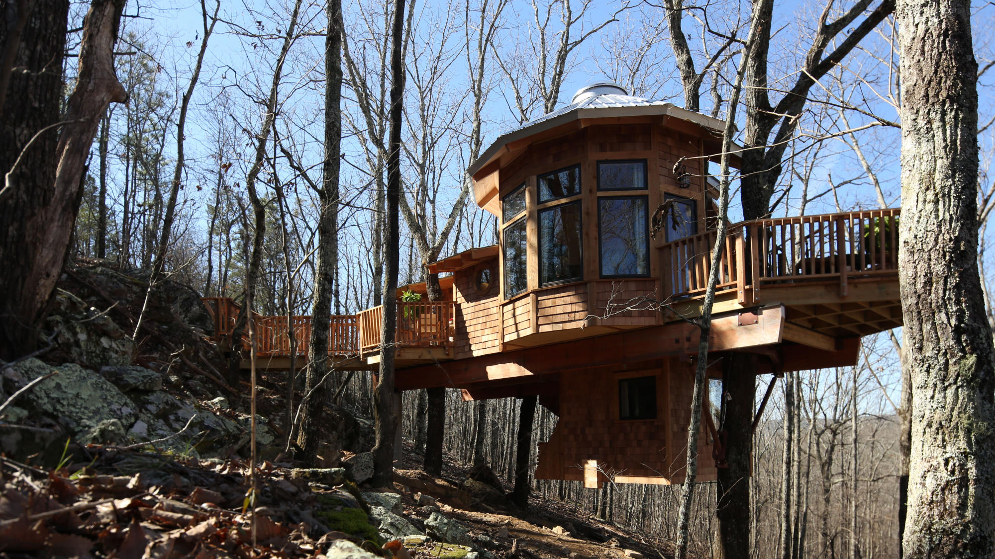Treehouse Exterior Two