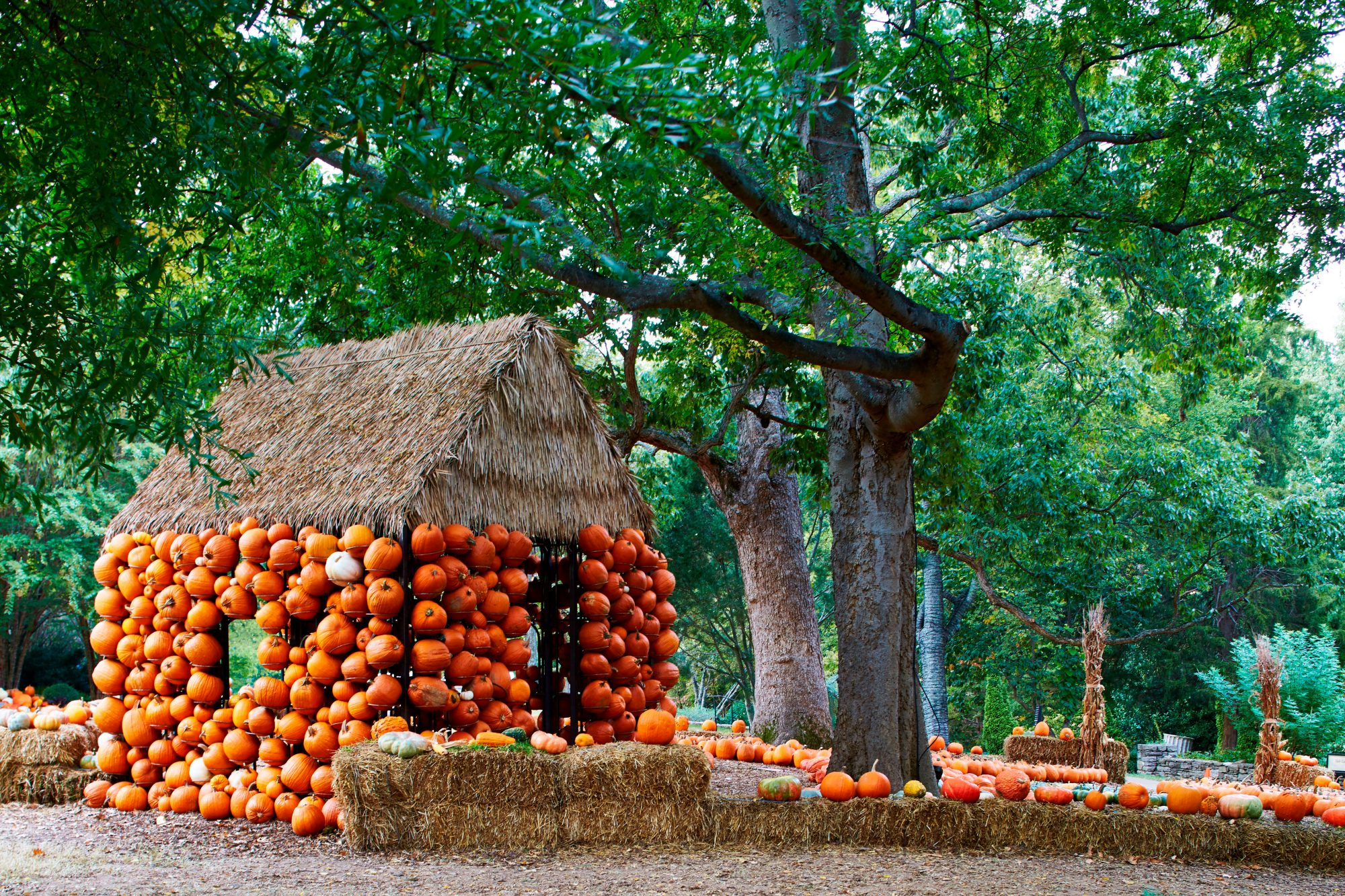 Cheekwood Pumpkin House Exterior