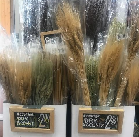Dried Natural Wheat Bundles