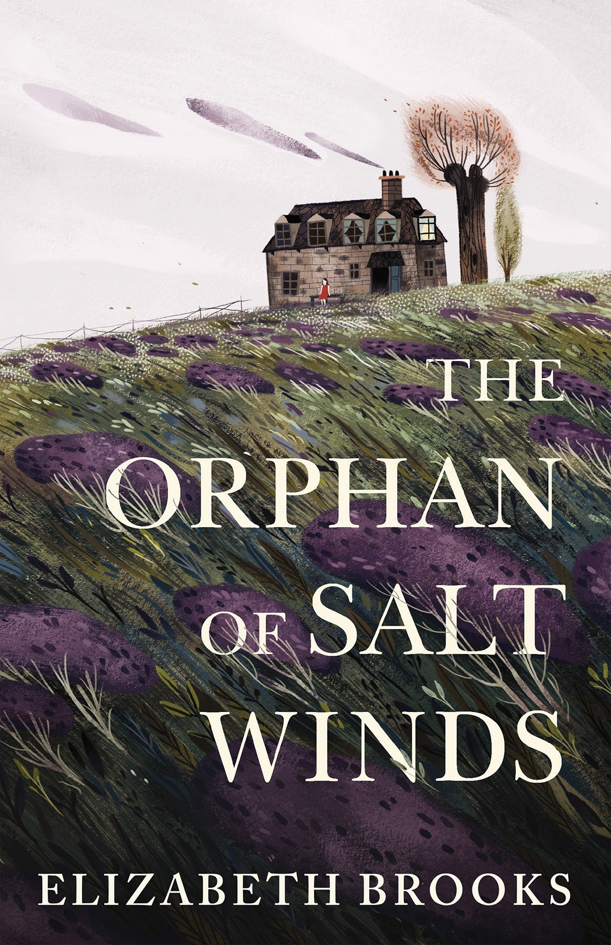 The Orphan of Salt Winds by Elizabeth Brooks
