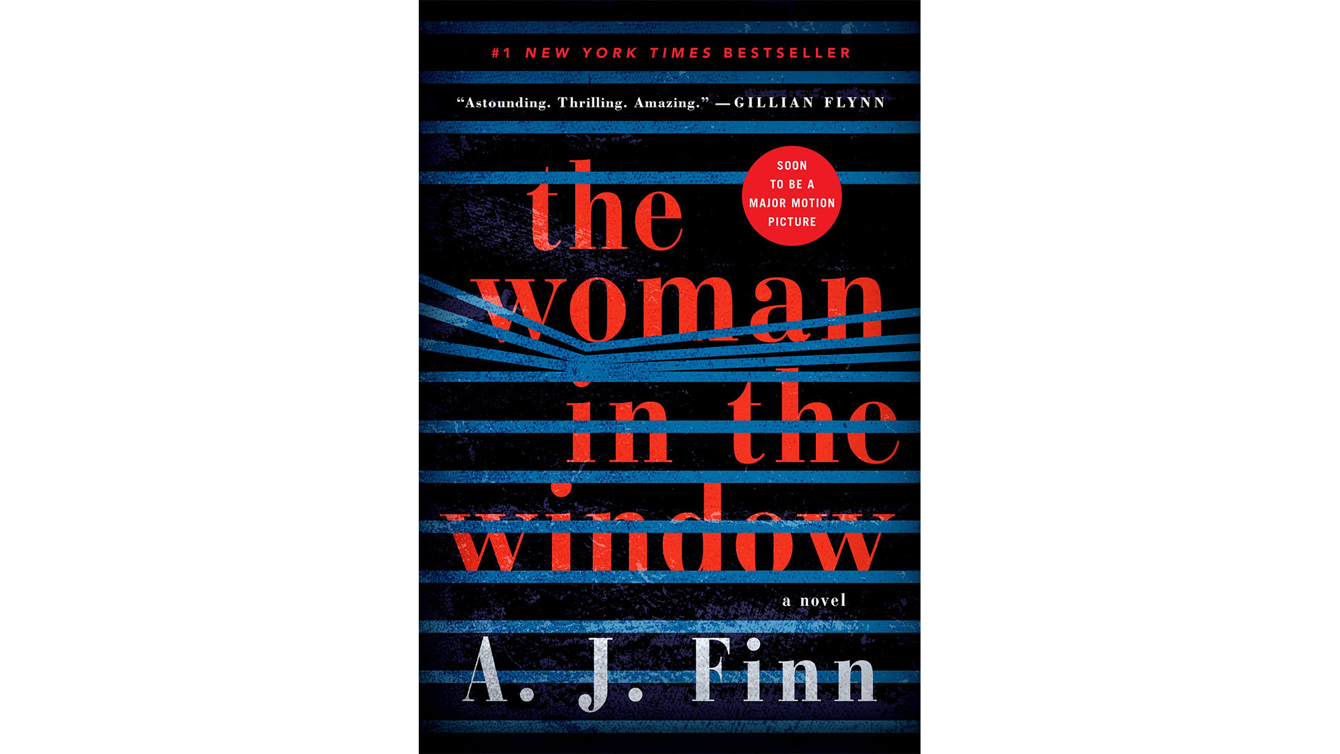6.  The Woman in the Window  by A.J. Finn