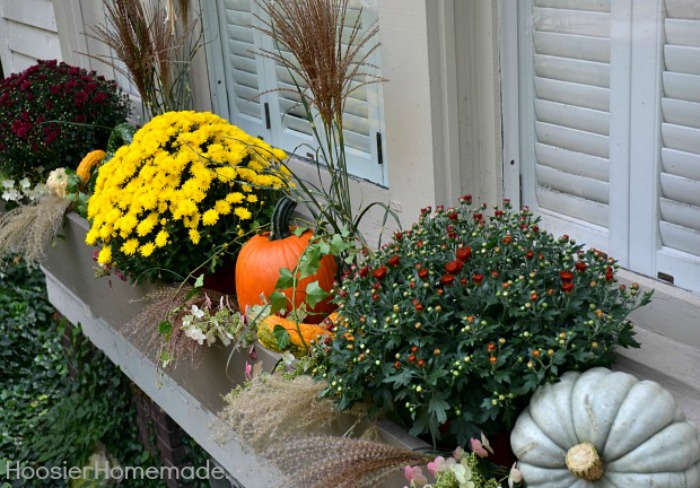Add Them to a Fall Window Box