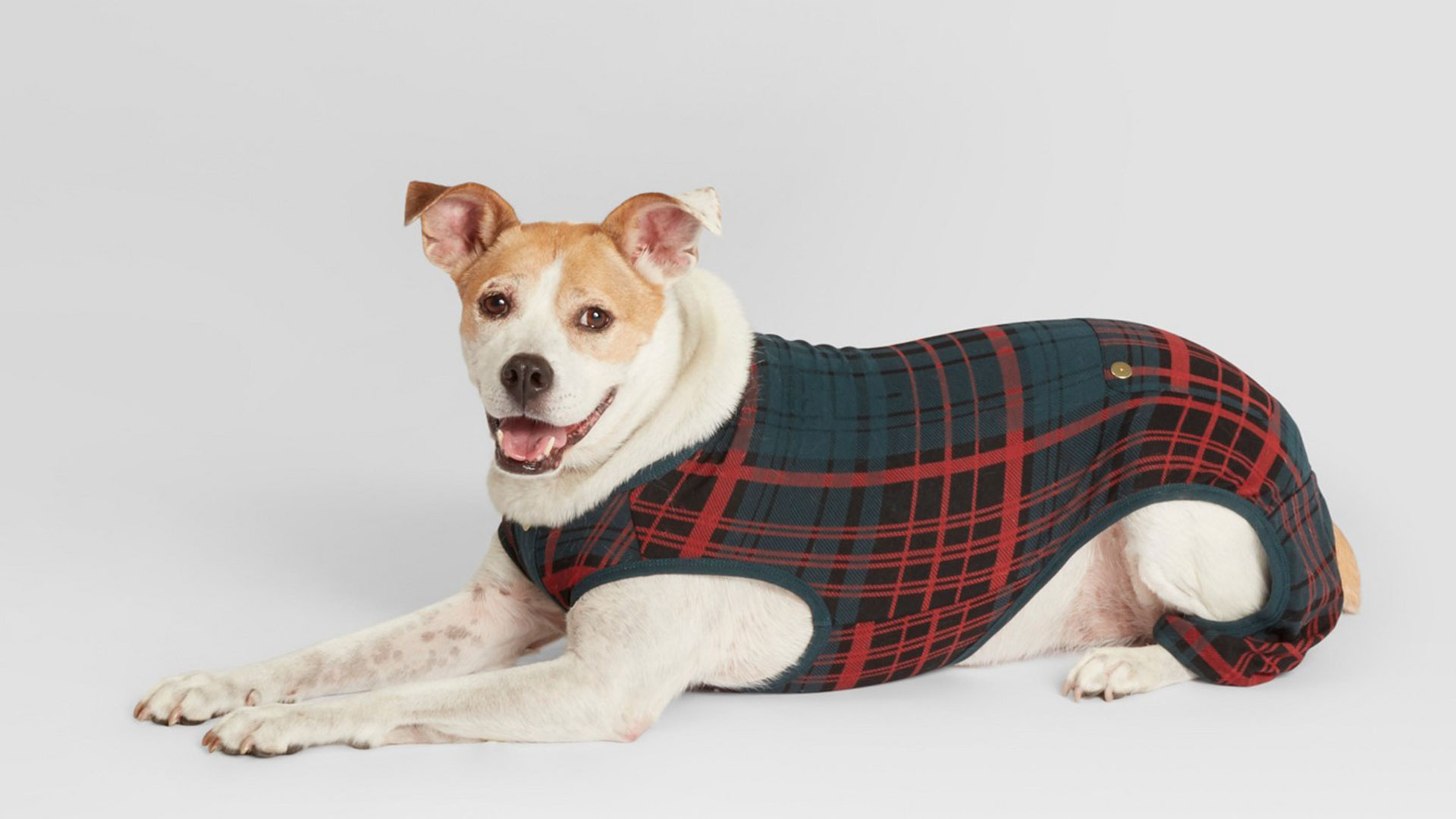 Pet Plaid Holiday Pajamas