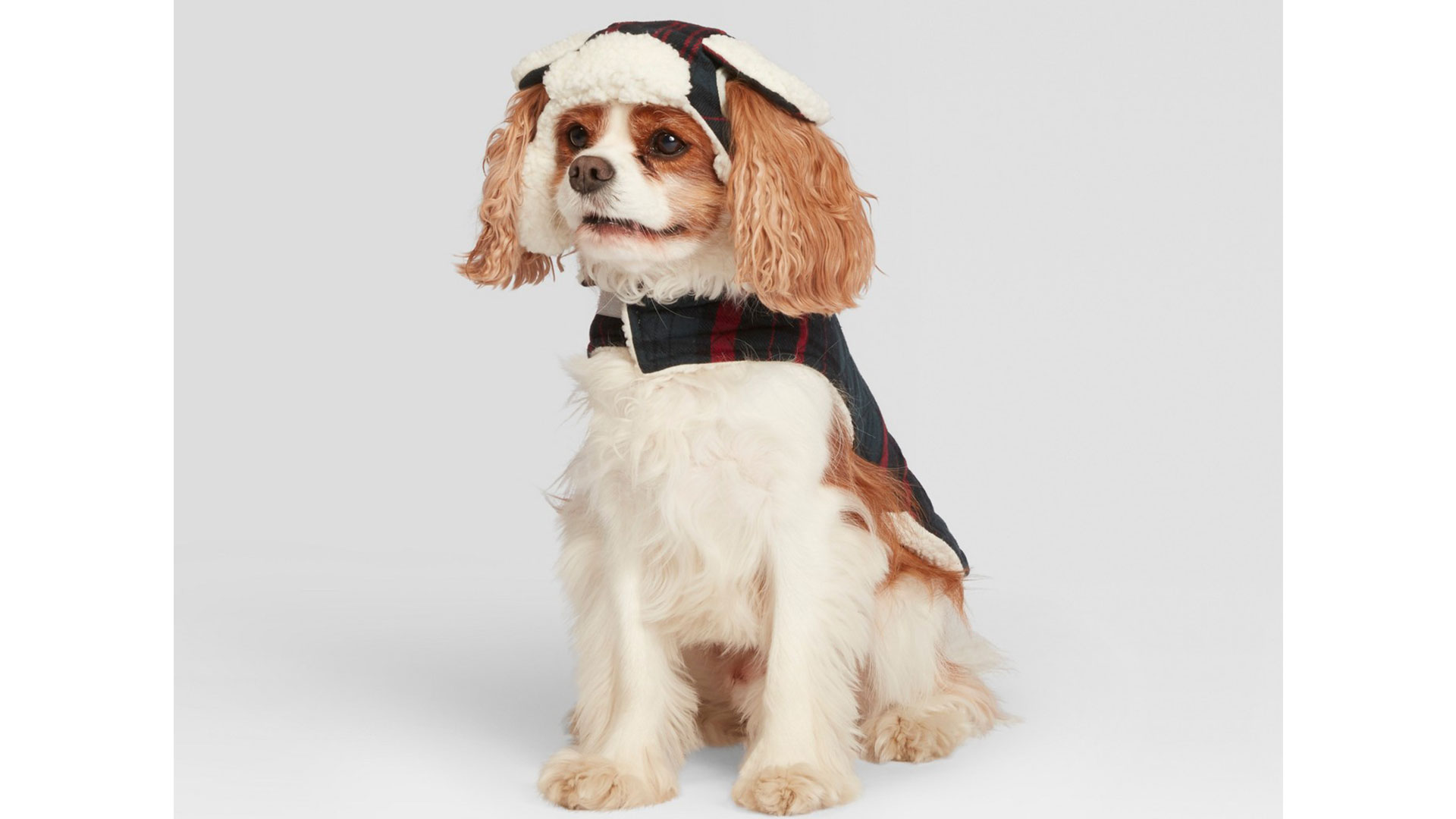Pet Plaid Trapper Hat