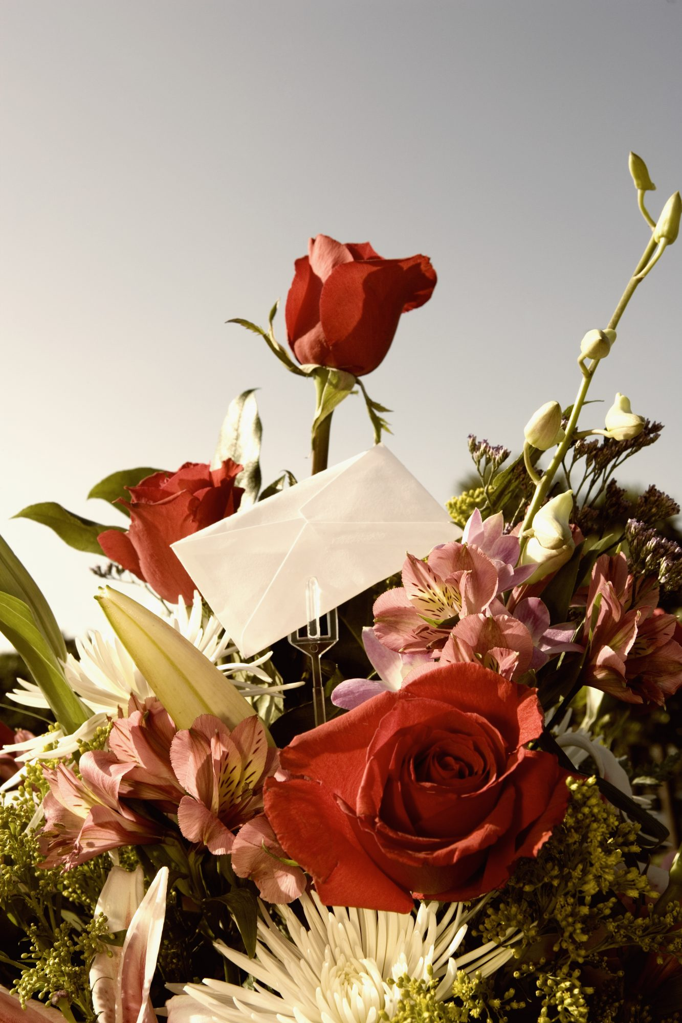 115 Sympathy Messages for Cards or Flowers - Southern Living