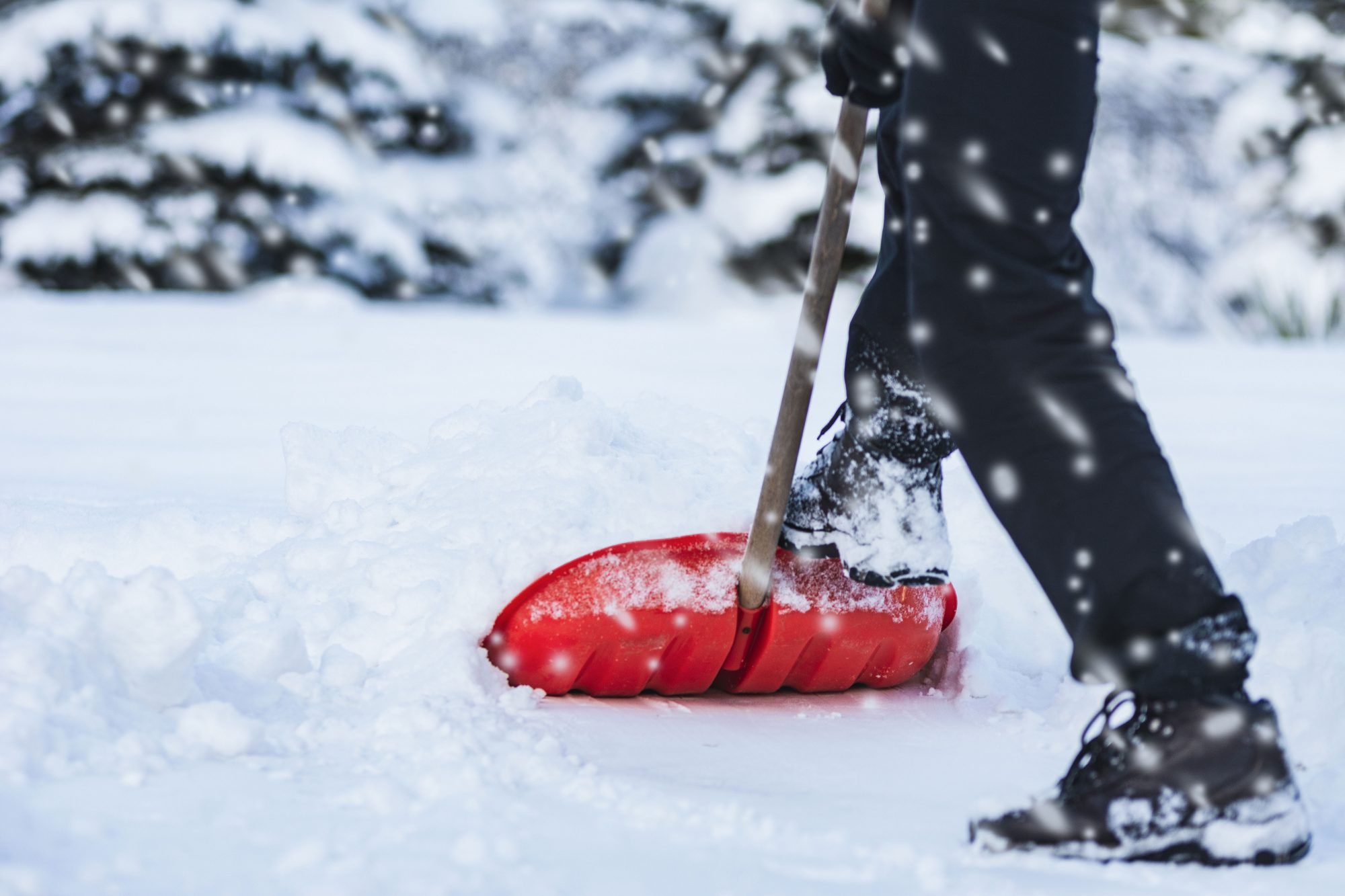 Southern Living Snow Shoveling